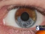 brown-eyes-blue-eyes-300x225