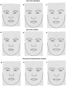 face shape
