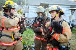 dogs and house fires