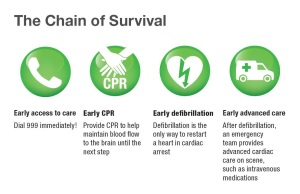 Chain of Survival full size