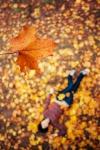 falling_in_autumn